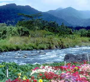 Panama-Boquete-Fairgrounds-edge-of-Rio-Calera-12-92-300x275
