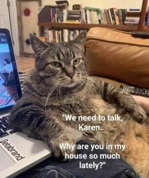 56115-we-need-to-talk-karen-why-are-you-in-my-house-so-much-lately